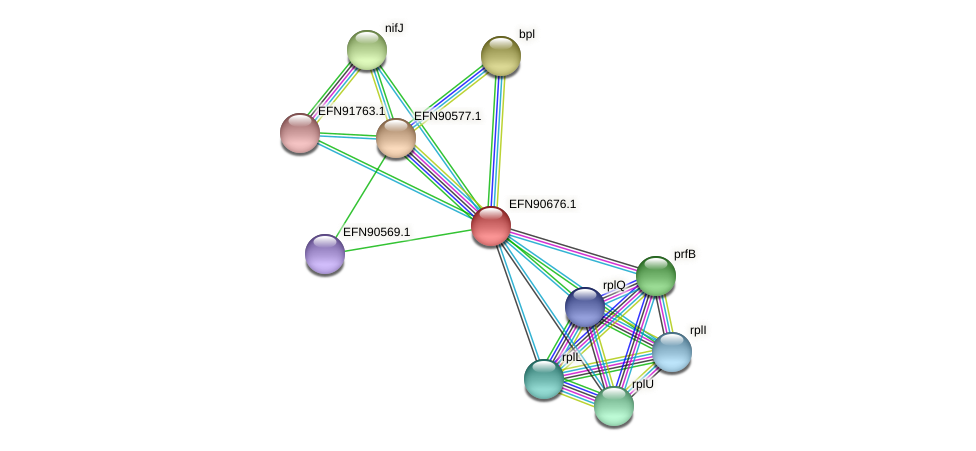 HMPREF9018_1387 protein (Prevotella amnii) - STRING interaction network
