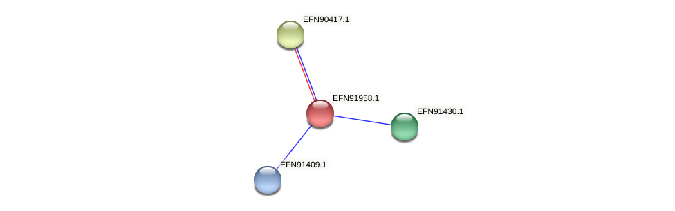 HMPREF9018_1393 protein (Prevotella amnii) - STRING interaction network