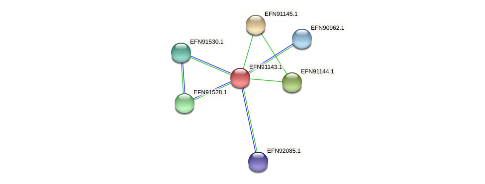 HMPREF9018_1395 protein (Prevotella amnii) - STRING interaction network
