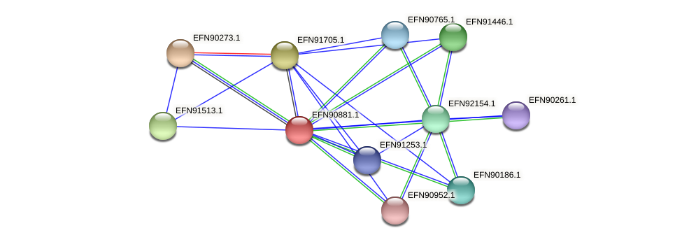 HMPREF9018_1467 protein (Prevotella amnii) - STRING interaction network