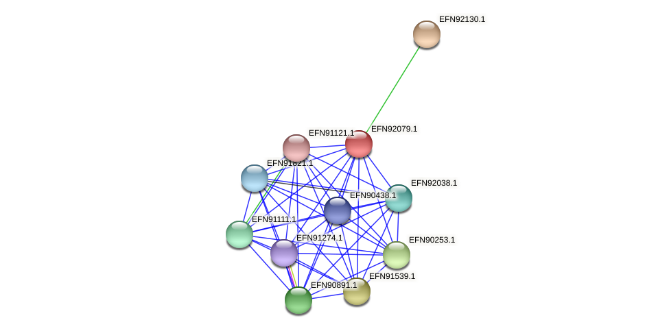 HMPREF9018_1516 protein (Prevotella amnii) - STRING interaction network