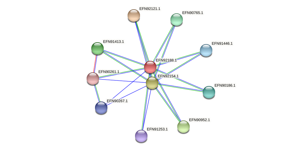 HMPREF9018_1532 protein (Prevotella amnii) - STRING interaction network