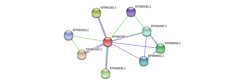 HMPREF9018_1542 protein (Prevotella amnii) - STRING interaction network