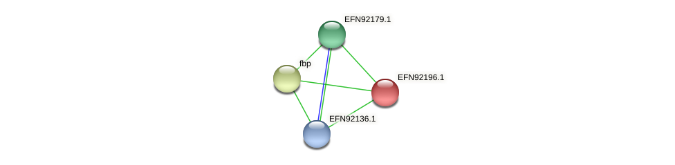 HMPREF9018_1572 protein (Prevotella amnii) - STRING interaction network