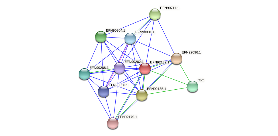 HMPREF9018_1579 protein (Prevotella amnii) - STRING interaction network