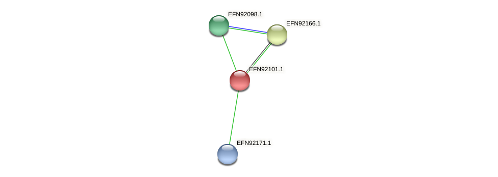 HMPREF9018_1598 protein (Prevotella amnii) - STRING interaction network