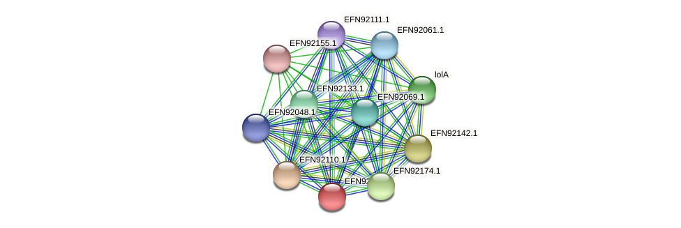 HMPREF9018_1606 protein (Prevotella amnii) - STRING interaction network