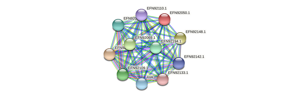 HMPREF9018_1617 protein (Prevotella amnii) - STRING interaction network