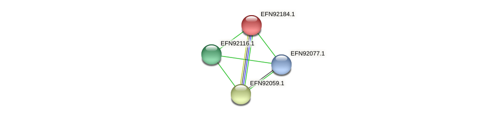 HMPREF9018_1634 protein (Prevotella amnii) - STRING interaction network