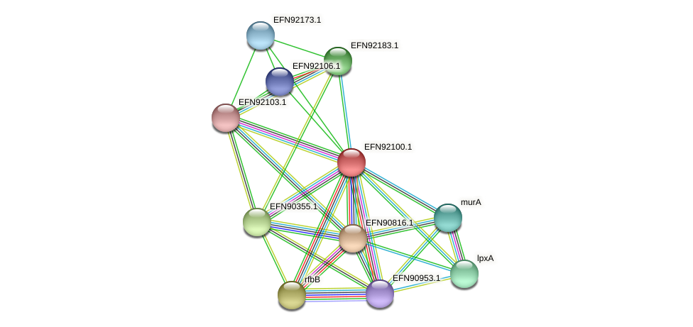 HMPREF9018_1645 protein (Prevotella amnii) - STRING interaction network