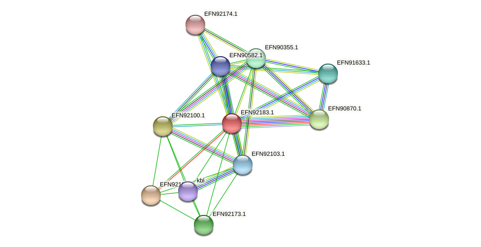 HMPREF9018_1647 protein (Prevotella amnii) - STRING interaction network