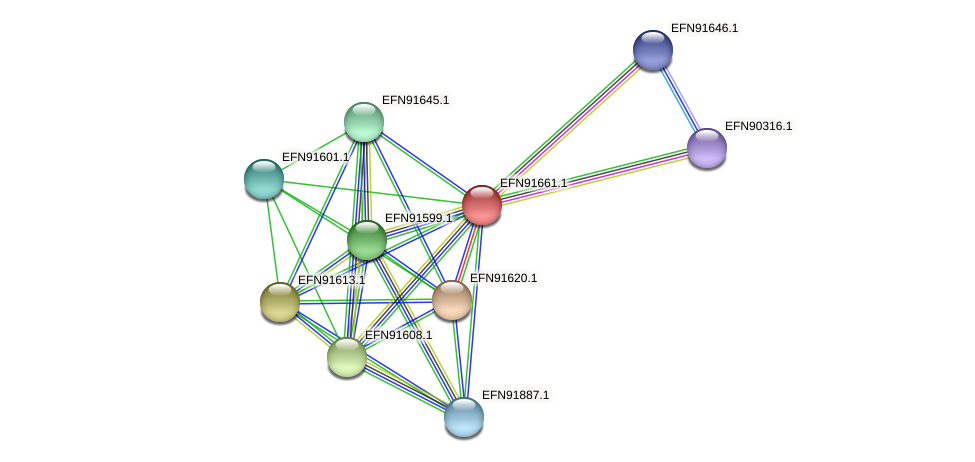 HMPREF9018_1668 protein (Prevotella amnii) - STRING interaction network