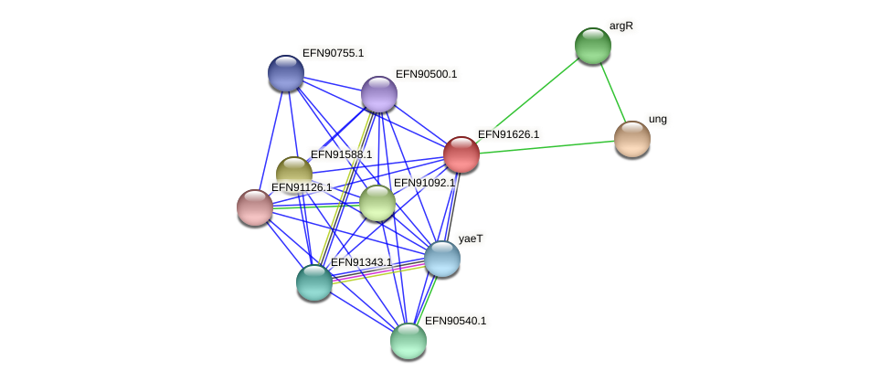 HMPREF9018_1723 protein (Prevotella amnii) - STRING interaction network