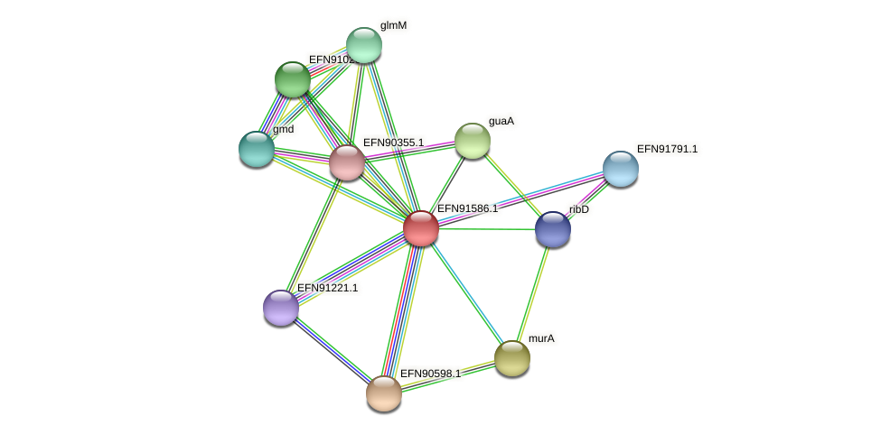HMPREF9018_1732 protein (Prevotella amnii) - STRING interaction network