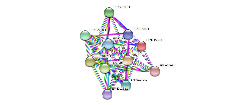 HMPREF9018_1742 protein (Prevotella amnii) - STRING interaction network