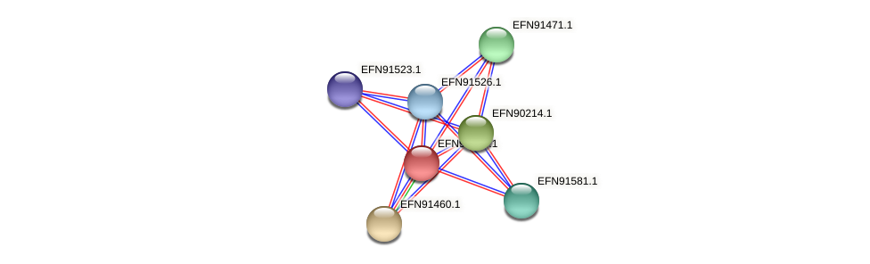 HMPREF9018_1745 protein (Prevotella amnii) - STRING interaction network