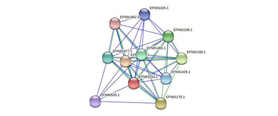 HMPREF9018_1766 protein (Prevotella amnii) - STRING interaction network
