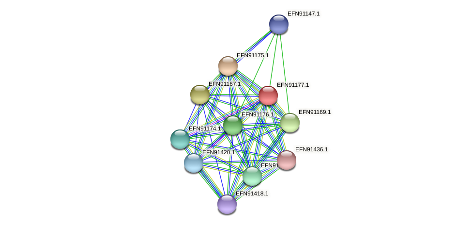 HMPREF9018_1779 protein (Prevotella amnii) - STRING interaction network