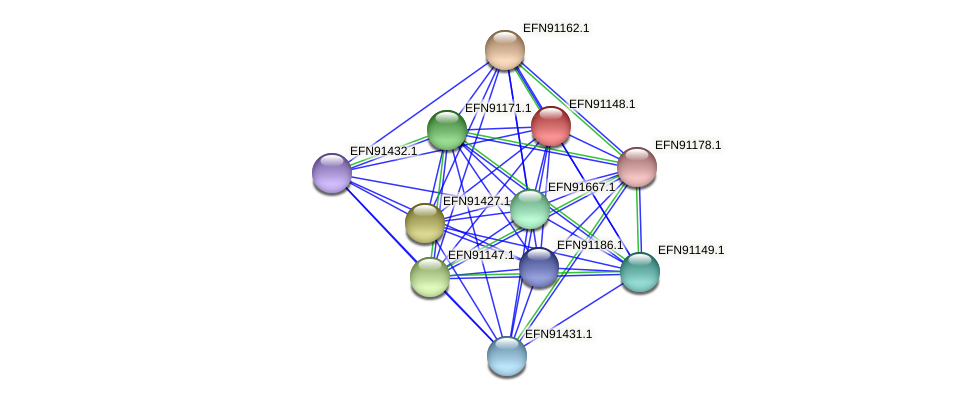 HMPREF9018_1785 protein (Prevotella amnii) - STRING interaction network