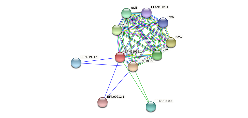 HMPREF9018_1801 protein (Prevotella amnii) - STRING interaction network