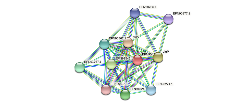 HMPREF9018_1848 protein (Prevotella amnii) - STRING interaction network
