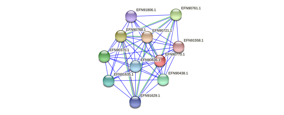 HMPREF9018_2011 protein (Prevotella amnii) - STRING interaction network