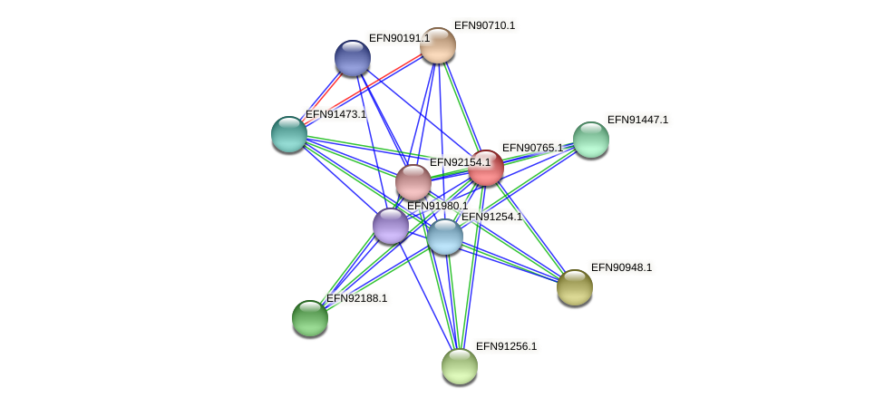 HMPREF9018_2025 protein (Prevotella amnii) - STRING interaction network