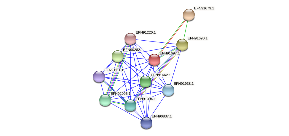 HMPREF9018_2059 protein (Prevotella amnii) - STRING interaction network