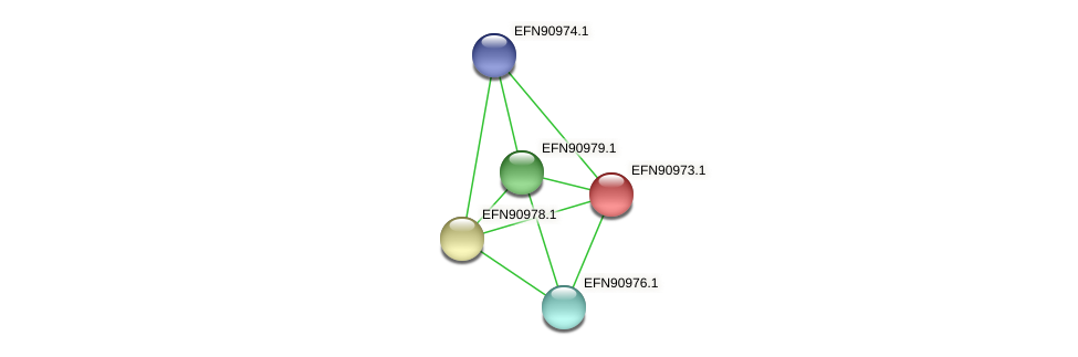 HMPREF9018_2073 protein (Prevotella amnii) - STRING interaction network