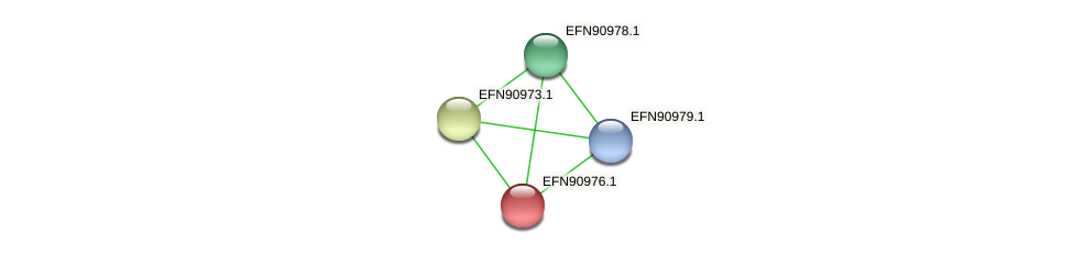 HMPREF9018_2075 protein (Prevotella amnii) - STRING interaction network