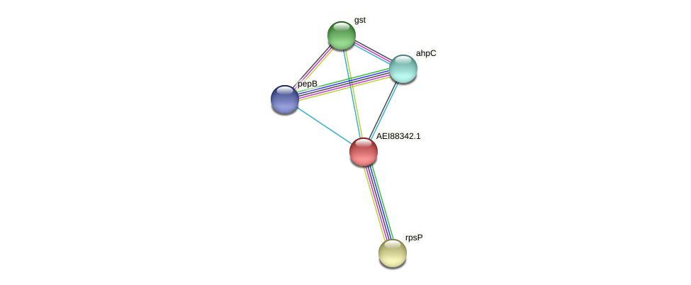 midi_00016 protein (Midichloria mitochondrii) - STRING interaction network
