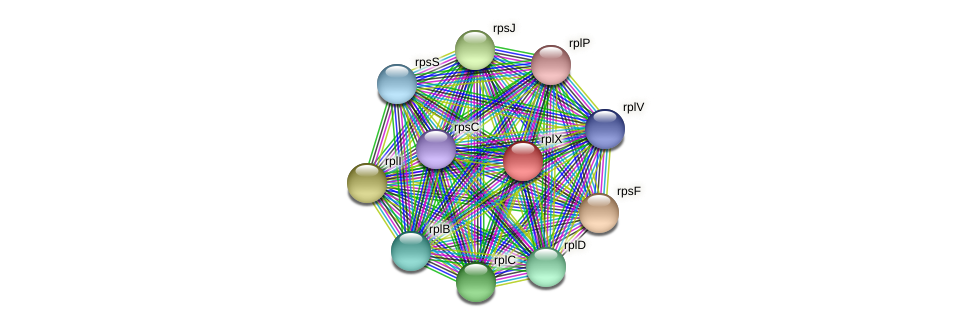 rplX protein (Midichloria mitochondrii) - STRING interaction network