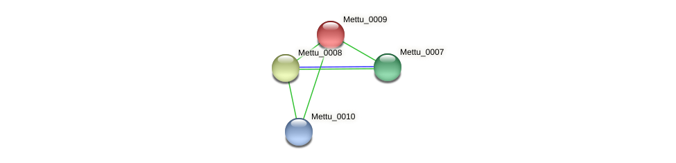 Mettu_0009 protein (Methylobacter tundripaludum) - STRING interaction network