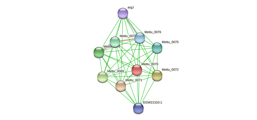 Mettu_0070 protein (Methylobacter tundripaludum) - STRING interaction network