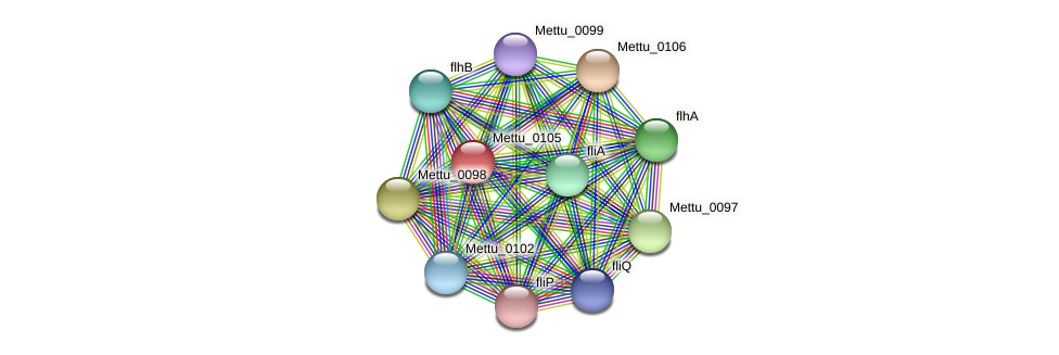Mettu_0105 protein (Methylobacter tundripaludum) - STRING interaction network