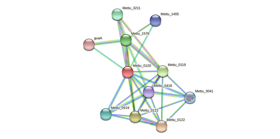 Mettu_0120 protein (Methylobacter tundripaludum) - STRING interaction network