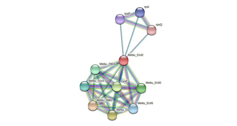 Mettu_0142 protein (Methylobacter tundripaludum) - STRING interaction network