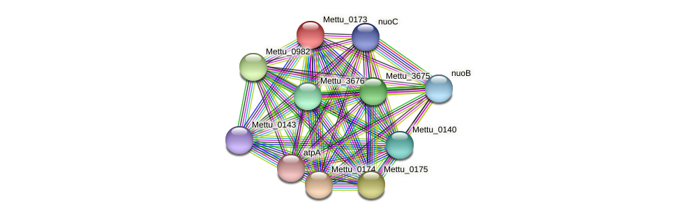 Mettu_0173 protein (Methylobacter tundripaludum) - STRING interaction network