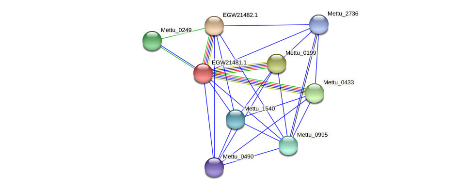 EGW21481.1 protein (Methylobacter tundripaludum) - STRING interaction network