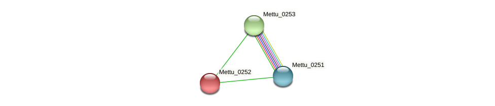Mettu_0252 protein (Methylobacter tundripaludum) - STRING interaction network