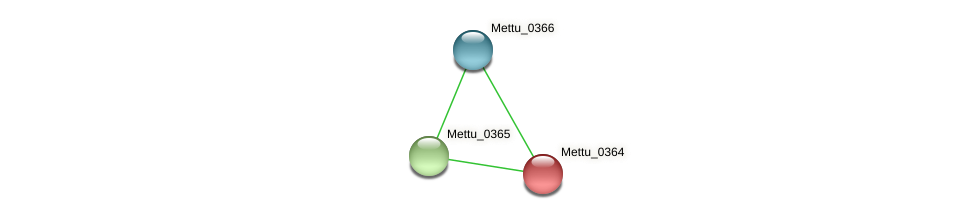 Mettu_0364 protein (Methylobacter tundripaludum) - STRING interaction network
