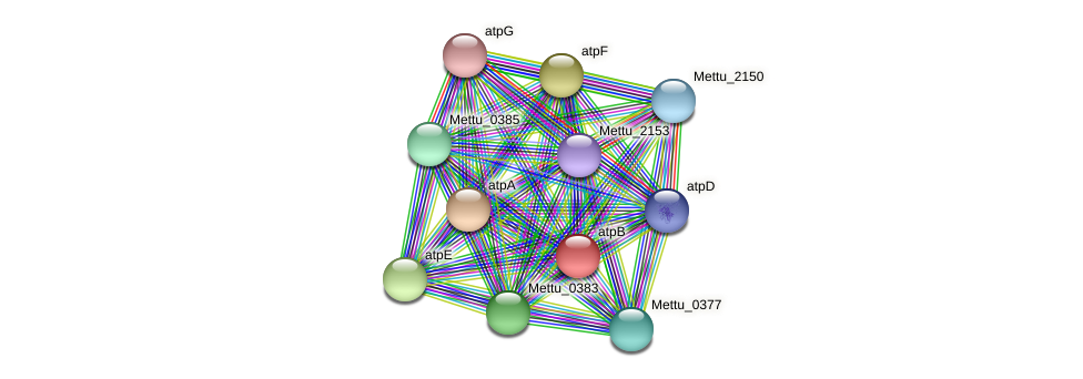Mettu_0381 protein (Methylobacter tundripaludum) - STRING interaction network