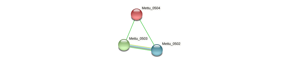 Mettu_0504 protein (Methylobacter tundripaludum) - STRING interaction network