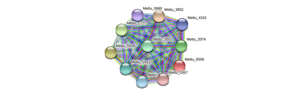 Mettu_0508 protein (Methylobacter tundripaludum) - STRING interaction network