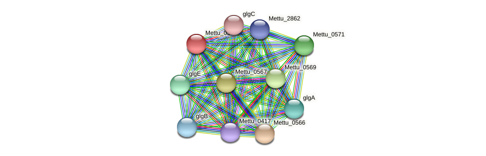 Mettu_0568 protein (Methylobacter tundripaludum) - STRING interaction network