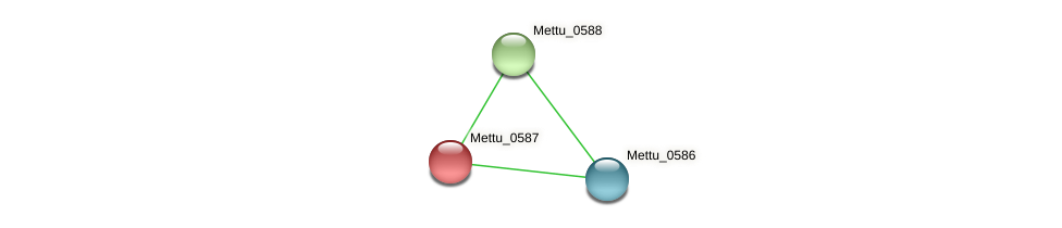 Mettu_0587 protein (Methylobacter tundripaludum) - STRING interaction network