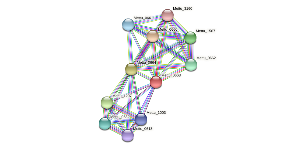 Mettu_0663 protein (Methylobacter tundripaludum) - STRING interaction network