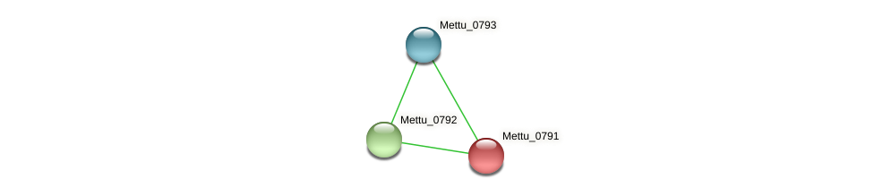 Mettu_0791 protein (Methylobacter tundripaludum) - STRING interaction network