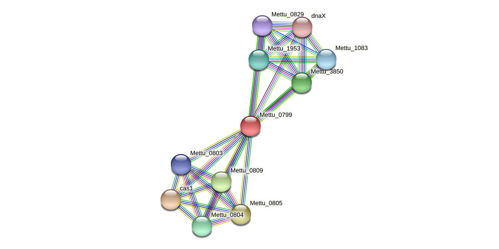 Mettu_0799 protein (Methylobacter tundripaludum) - STRING interaction network