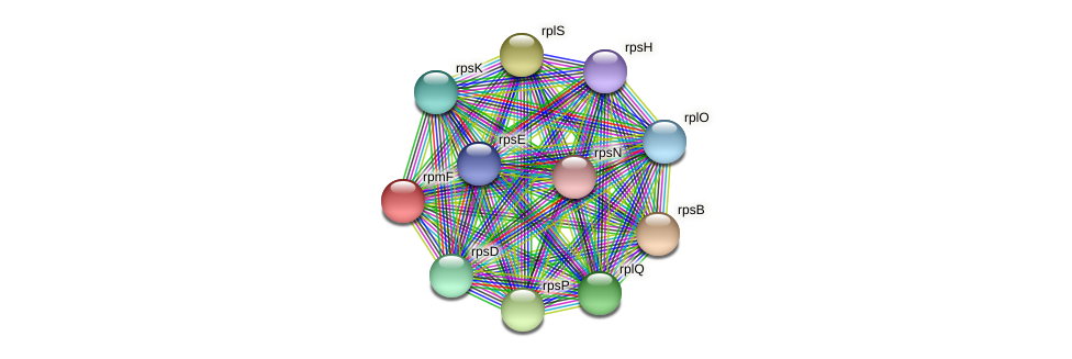 rpmF protein (Methylobacter tundripaludum) - STRING interaction network